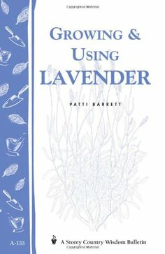 Growing & Using Lavender: Storey's Country Wisdom Bulletin A-155 (Storey Country Wisdom Bulletin) - http://spicegrinder.biz/growing-using-lavender-storeys-country-wisdom-bulletin-a-155-storey-country-wisdom-bulletin/