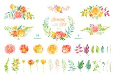 Summer Sun. Floral Collection by OctopusArtis on Creative Market