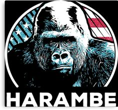Harambe is Us