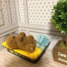 羊毛フェルト 犬 子犬 へそ天 プードル トイプードル スタンダードプードル 寝ている子犬 レッド