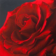 Revelation II - Red Rose By Vincent Keeling - PRINT