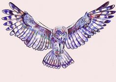 flying owl by angela castrillon----- only BLUE not PURPLE