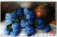 hortênsias - Patricia Peres - Álbuns da web do Picasa