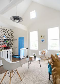 This pet-friendly greeting area at the One Tail at a Time Adoption Center got a major face-lift with modern furniture and canine accents fit for dog lovers. Photo by @yellowbrickhome
