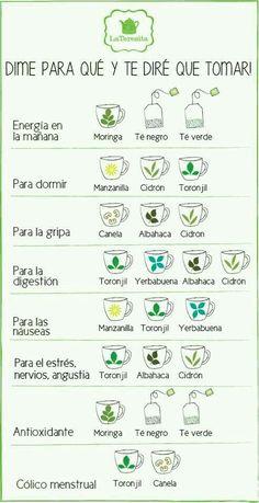 Guia de tés