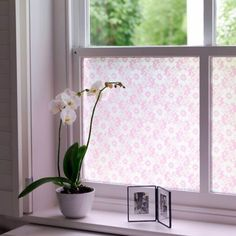 Bathroom window privacy plants 58 Ideas for 2019 Diy Lace Privacy Window, Bathroom Window Privacy, Bathroom Window Coverings, Lace Window, Bathroom Windows, Window Curtains, Net Curtains, Family Bathroom, Modern Bathroom