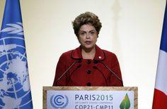 """Durante a 21ª Conferência das Partes da Convenção-Quadro sobre Mudança do Clima (COP21) em dezembro, em Paris, o governo assumiu o compromisso de extinguir a retirada ilegal de floresta na Amazônia até 2030. """"Se o país se comprometeu a acabar com o desmatamento, que comece pelas áreas protegidas"""", diz Elis. Parece óbvio. No Brasil, no entanto, até o básico é difícil."""