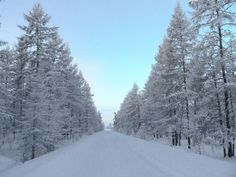 Oymyakon, in Siberia, is the coldest permanently inhabited place on Earth. http://www.wideview.it/travel/Yakutia_2007/Big/P1100026.jpg