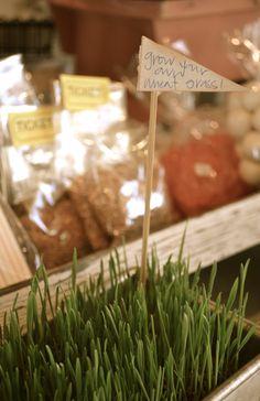 Hollyhocks & Honeybees: Growing Wheat Grass for Easter decor Growing Wheat Grass, Soil Layers, Easter Eggs, Easter Food, Easter Decor, Easter Parade, Easter Weekend, Hollyhock, Potting Soil