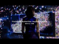 Flutter of Butterflies Beyond Borders | teamLab / チームラボ