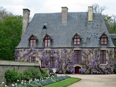 gardener's house (of fantastical scale) Chenonceau with some superb wisteria
