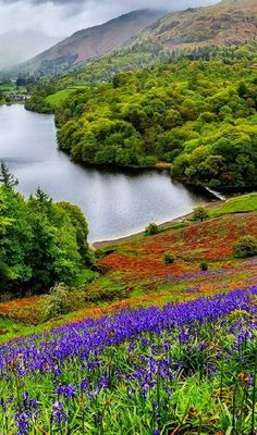 ✿༺ Ambleside Lake, England.