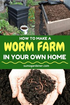 People tend to purchase a worm farm, which can be very expensive. This is the reason why more and more people are looking for ways on how they can make their worm farms. Gardening For Beginners, Gardening Tips, Worm Farm Diy, Aquaponique Diy, Earthworm Farm, Worm Beds, Worm Composting, Home Vegetable Garden, Earthworms