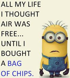 Here we have some of Hilarious jokes Minions and Jokes. Its good news for all minions lover. If you love these Yellow Capsule looking funny Minions then you will surely love these Hilarious jokes…More Funny Minion Pictures, Funny Minion Memes, Minions Quotes, Crazy Funny Memes, Really Funny Memes, Funny Relatable Memes, Funny Texts, Minions Pics, Hilarious Jokes