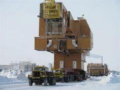 Ice road trucking. I would say that is a big move. www.batsbirdsyard.com = Bat Houses.