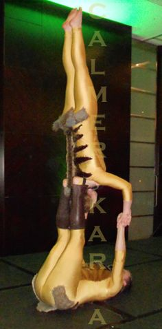 Meercat Acrobalance - stunning staged act.  Hint of Zoo themed entertainment to hire across the UK inc Manchester, London, Birmingham, Brighton and Wales. www.calmerkarma.co.uk Tel:  020 3602 9540