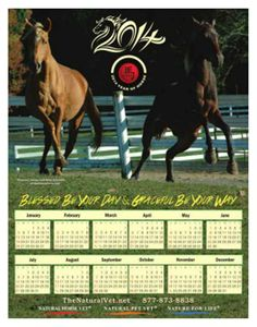 "Download our ""Year-Of-The-Horse"" calendar here --> http://www.thenaturalvet.net/Year-Of-The-Horse_ep_62-1.html"