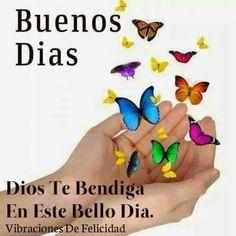 Buenos días, Dios te bendiga en este bello día.