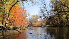 Rocky River Three Rivers Mi Photo by Alice Dobrowolski