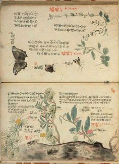 Japanese botanical