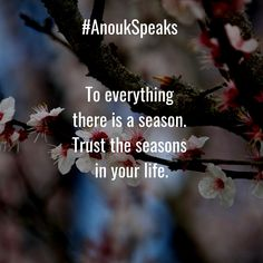 To everything there is a season. Trust the seasons in your life. Self Realization, Spiritual Path, Healer, Your Life, Everything, New Experience, Psychology, The Cure, Trust
