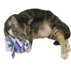Jilly Jellyfish Catnip Toy - BD Luxe Dogs & Supplies - 1