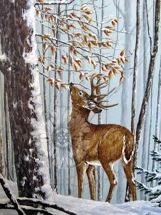 Original acrylic painting by Alana Lee Wildlife Paintings, Wildlife Art, Animal Paintings, Deer Paintings, Image Halloween, Watercolor Animals, Acrylic Painting Animals, Deer Art, Winter Painting