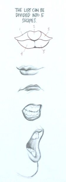 lips tutorial by Frank Cho