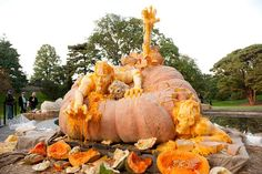 funny and big pumpkin carvings - My Yahoo Image Search Results
