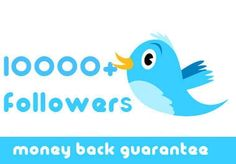 I will increase 10000+ all real twitter followers to your account without password for $20