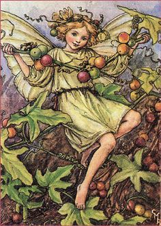 Vintage Fairy Illustration---Cecily Mary Barker