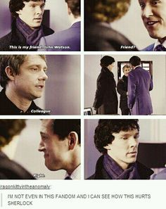 """I suppose this happened very early on in their relationship, before John knew Sherlock well enough to understand how much this would hurt his feelings, but I still get a little mad at him every time I watch this scene."""