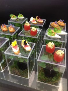 Pinterest the world s catalog of ideas for Perspex canape trays