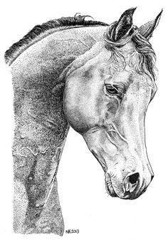 Paard - Horse; Pen en Oost-Indische inkt. 2013