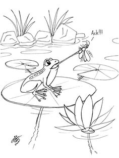 Draw a Frog 3 by Diana-Huang on DeviantArt Frog Drawing, Drawing For Kids, Drawing Lessons, Art Lessons, Cartoon Drawings, Easy Drawings, Animal Coloring Pages, Insect Coloring Pages, Learn To Sketch