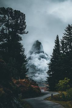 29 Products / 463 Lightroom Presets for Landscape & Travel Photography (Shop Bundle) Foggy Mountains Vintage Nature Photography, Landscape Photography Tips, Travel Photography, Photography Shop, Photography Lighting, Urban Photography, Photography Backdrops, Photography Ideas, Photography Settings