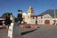 En Cota, Cundinamarca, presentan la exhibición más grande de plantas carnívoras