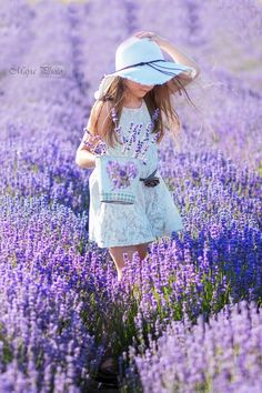 Lavender, levendula, mayaphoto