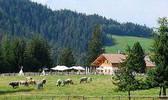 Monte S. Pietro, prima malga vegetariana del Trentino Alto Adige