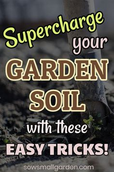 Supercharge your garden soil : Simple and easy tricks to supercharge your garden soil (no compost heap required!) Learn how to make soil fertile naturally by using kitchen scraps. Explore 4 easy ways of composting without a backyard compost bin. Garden Compost, Garden Soil, Edible Garden, Easy Garden, Lawn And Garden, How To Garden, Gnome Garden, Garden Landscaping, Gardening For Beginners