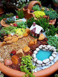 Fairy Garden Pots, Indoor Fairy Gardens, Fairy Garden Furniture, Dish Garden, Garden Terrarium, Fairy Garden Houses, Gnome Garden, Miniature Fairy Gardens, Balcony Garden