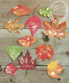 Gilded Leaf Place Cards DIY from Say Yes to Hoboken