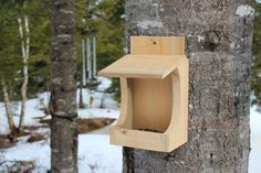 The other day I visited with a friend who has a series of bird feeders on the trees in the front yard. Essentially wooden boxes nailed about chest height, she always has lots of dinky birds flittin...