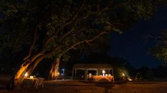 Pafuri Luxury Tented Camp | Specials 4 Africa