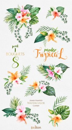 This set of 8 high quality hand painted watercolor tropical bouquets Perfect graphic for invitations, greeting cards, wallart, posters, logo, quotes and more.  Item details:  8 PNG files (300 dpi, RGB, transparent background) Wreaths size (larger side) aprox.: 12 in, 3600 px - 9 in, 2700 px ---------------------------------------------------------------- Tropical Bouquets part II : https://www.etsy.com/listing/504674009/tropical-watercolor-flowers-leaves?ref=list...