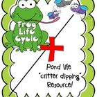 "Life cycle of a frog and Pond life ""critter dipping"" resource"
