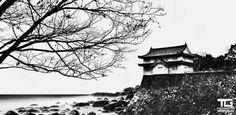 https://flic.kr/p/dJGT38   Japan   Canon 5D Mark III + Canon 50mm f/1.4 + B+W ND 110