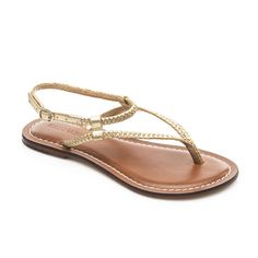 the inventor of the modern day sandal