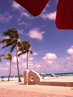 Windy but sunny in Fort Lauderdale, FL