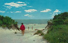 Gorgeous vintage scenic postcard of the sand dunes and the ocean at Jekyll Island State Park on Jekyll Island Georgia. Stunning beach view topped off with Georgia Islands, Jekyll Island Georgia, Vacation Places, Best Vacations, Vacation Ideas, Dewey Beach Delaware, Jekyll Island Club Hotel, Picture Postcards, State Parks